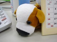 doggy01.jpg